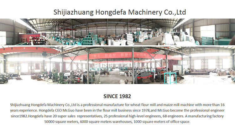 Complete line European standard of 100T/24H wheat flour mill machine