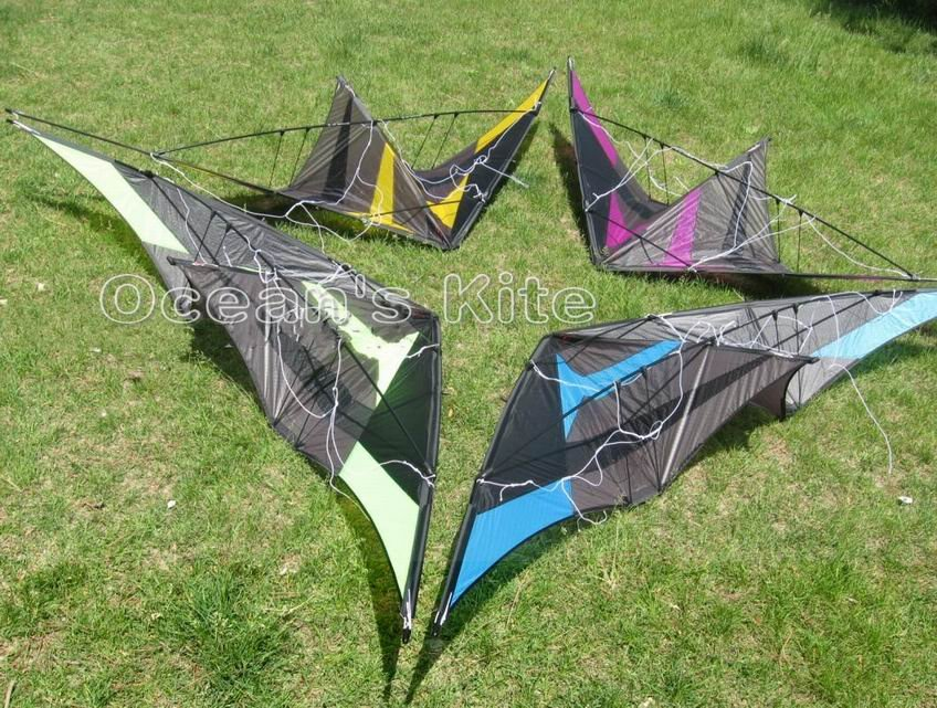 2014 New Style kite,Silver Fox Trick kite,Easy roll over