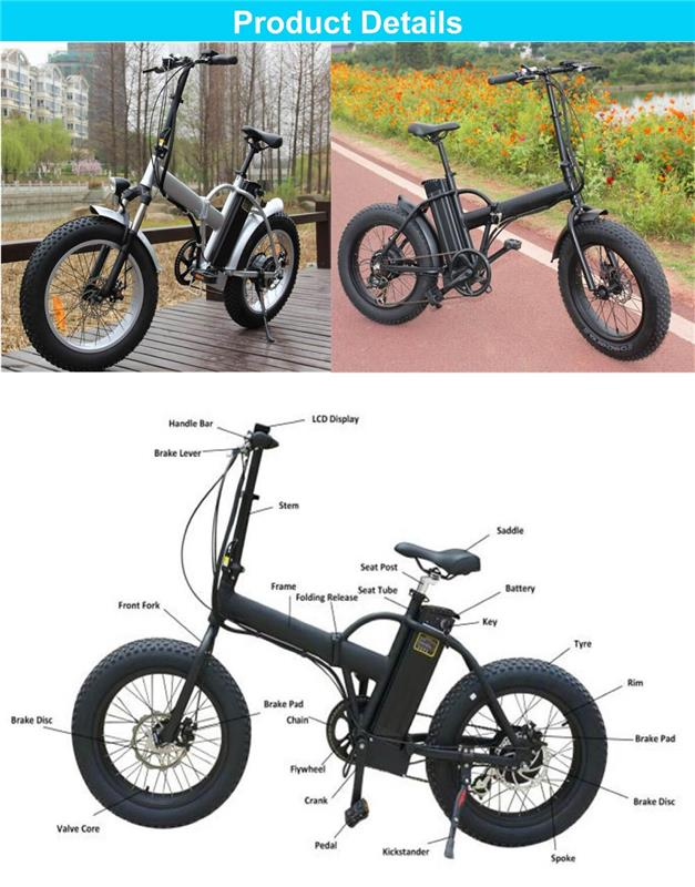 EN15194 Approved 48V Fat Tire electric bicycle with cheap price