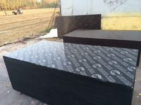 export to Kuwait brown film faced Plywood from shandong china
