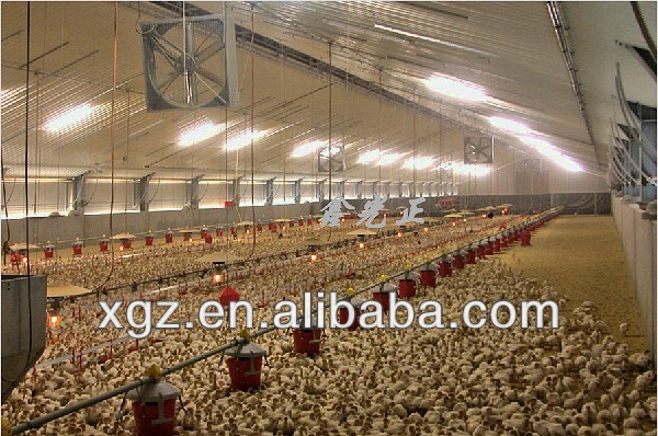 best price automatic equipment steel chicken poultry houses for sale in nigeria