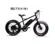 2018 hot sale 20 inch Fat Ebike 250W/350W/500W Rear Motor Electric Moped Mountain Bike