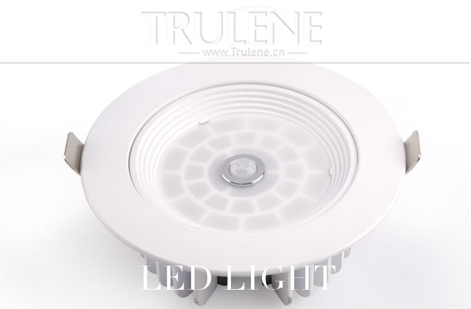 LED light Downlight (2).png