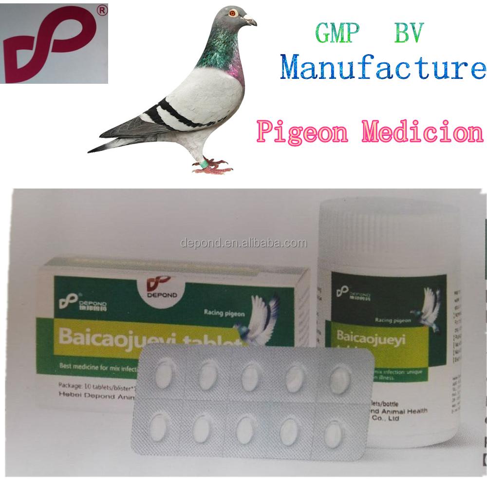 Antibacterial Pigeon Racing Medicine Chinese Herbal Veterinary And ...