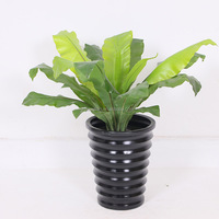 Plastic artificia trees and plants house decors hot sale