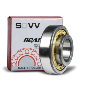10 Years Experience NJ1005 High Quality All Size Cylindrical Roller Bearing 25x47x12 mm