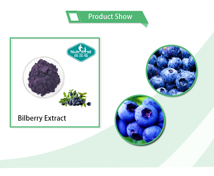 Pure Plant Extract Blueberry Extract Bilberry Extract