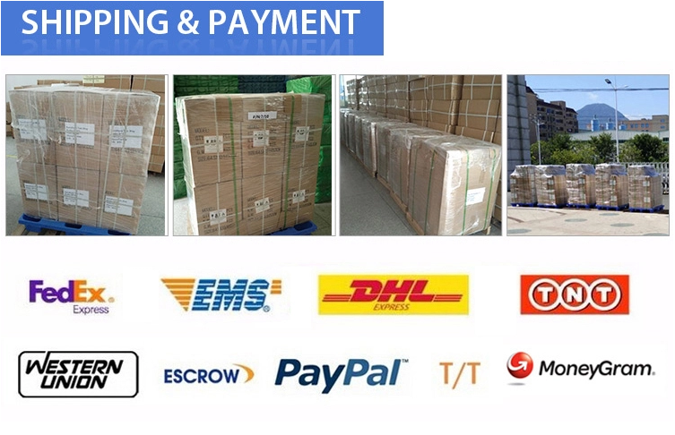 shipping & payment.png