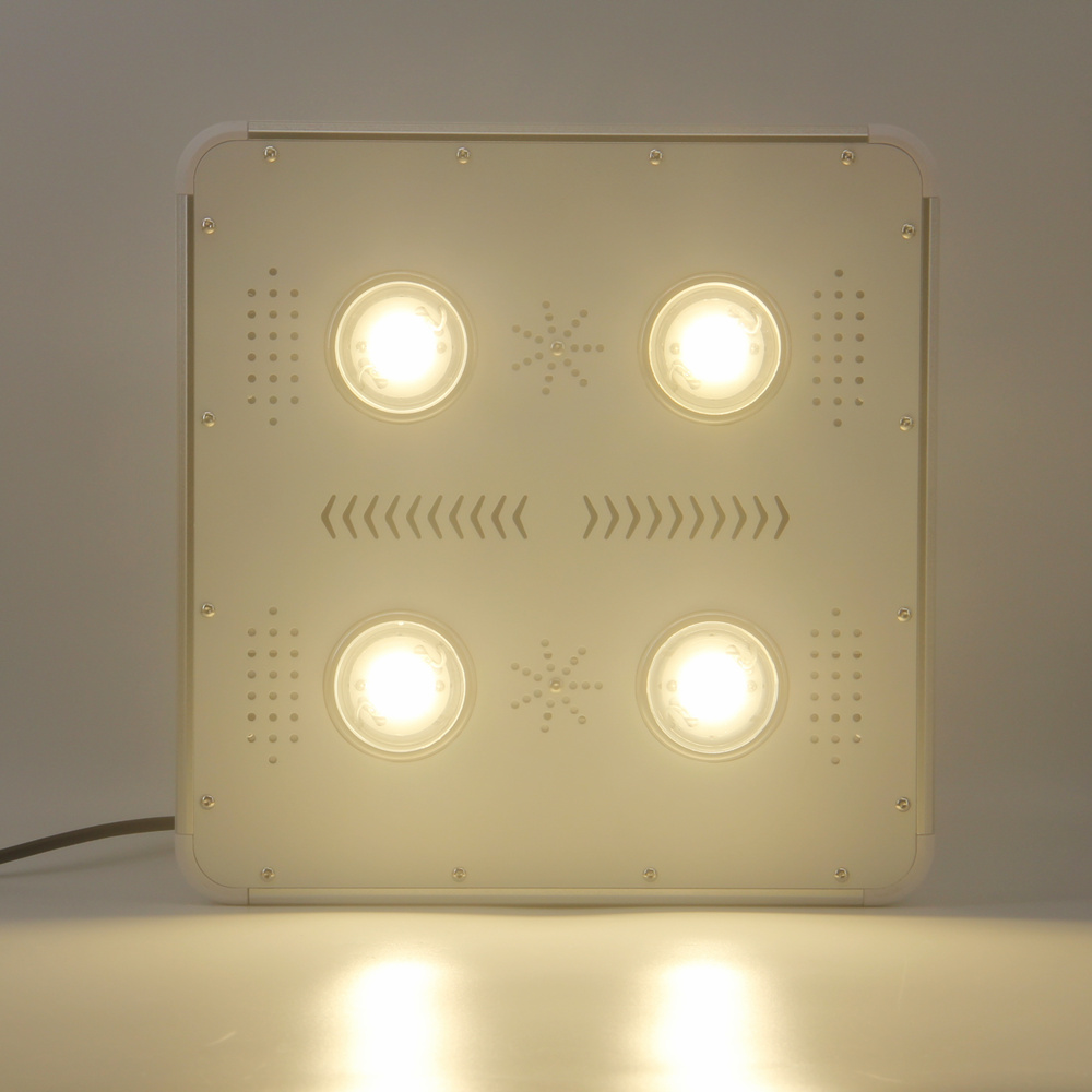 COB led grow (1)