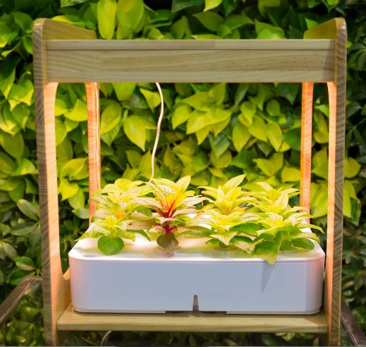 Small hydroponic system 3