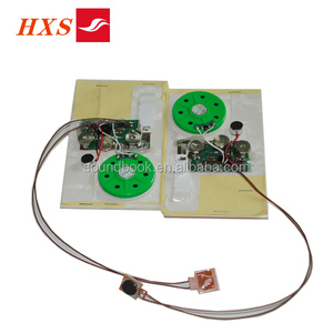 Factory Price Custom Electronic Programmable Music Sound Voice Melody IC  Chip For Greeting Card