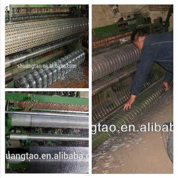 1 2 inch galvanized welded wire mesh lowes chicken wire mesh roll