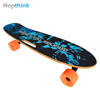 Wholesale Good Performance Electric Skateboard Hand Board Small Fish Plate Skateboards With Remote Controller