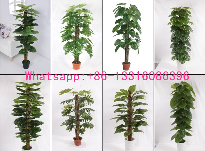 Q082612 different types of plants and trees artificial large indoor plants evergreen artificial for A gardener is planting two types of trees