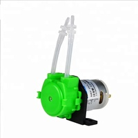Kamoer Micro NKP Low Flow Small Electric Water Dispenser Peristaltic Pump For Irrigation Plants