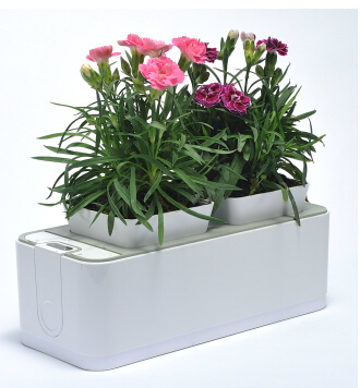 creative smart garden for plants Smart garden planter mini garden