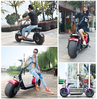 Hoilday promotion fat tire 2seats Original Factory Electric Scooter with Removable Battery citycoco 800w 1000w