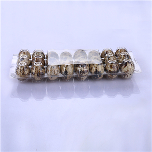 High quality clear PET plastic egg packaging tray / box / carton