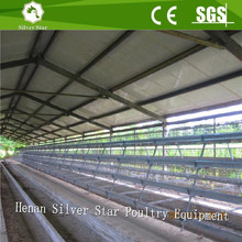 High quality design layer chicken cages for kenya hen farm