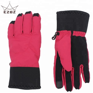 OEM Factory High Quality Winter Warm Snow Heated Windproof and Waterproof Ski Gloves