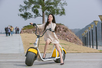2 Wheel Chinese Electric Foot Scooter Bike