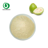 Factory Supply Natural Freeze Dried Fruit Flavor Guava Fruit Juice Powder