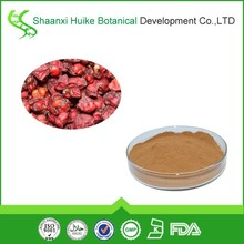 schizandra chinensis fruit extract/chinese herb/herbalist