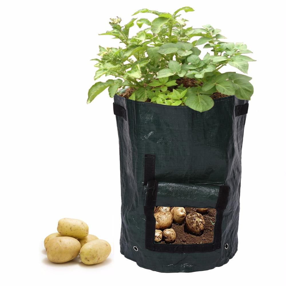 achetez en gros sacs de pommes de terre pour la culture des pommes en ligne des grossistes. Black Bedroom Furniture Sets. Home Design Ideas