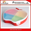 Various Shaped Colorful Seasoning Box