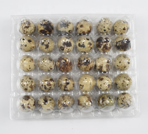 China Factory production transparent disposable 30 holes plastic quail egg carton packaging tray