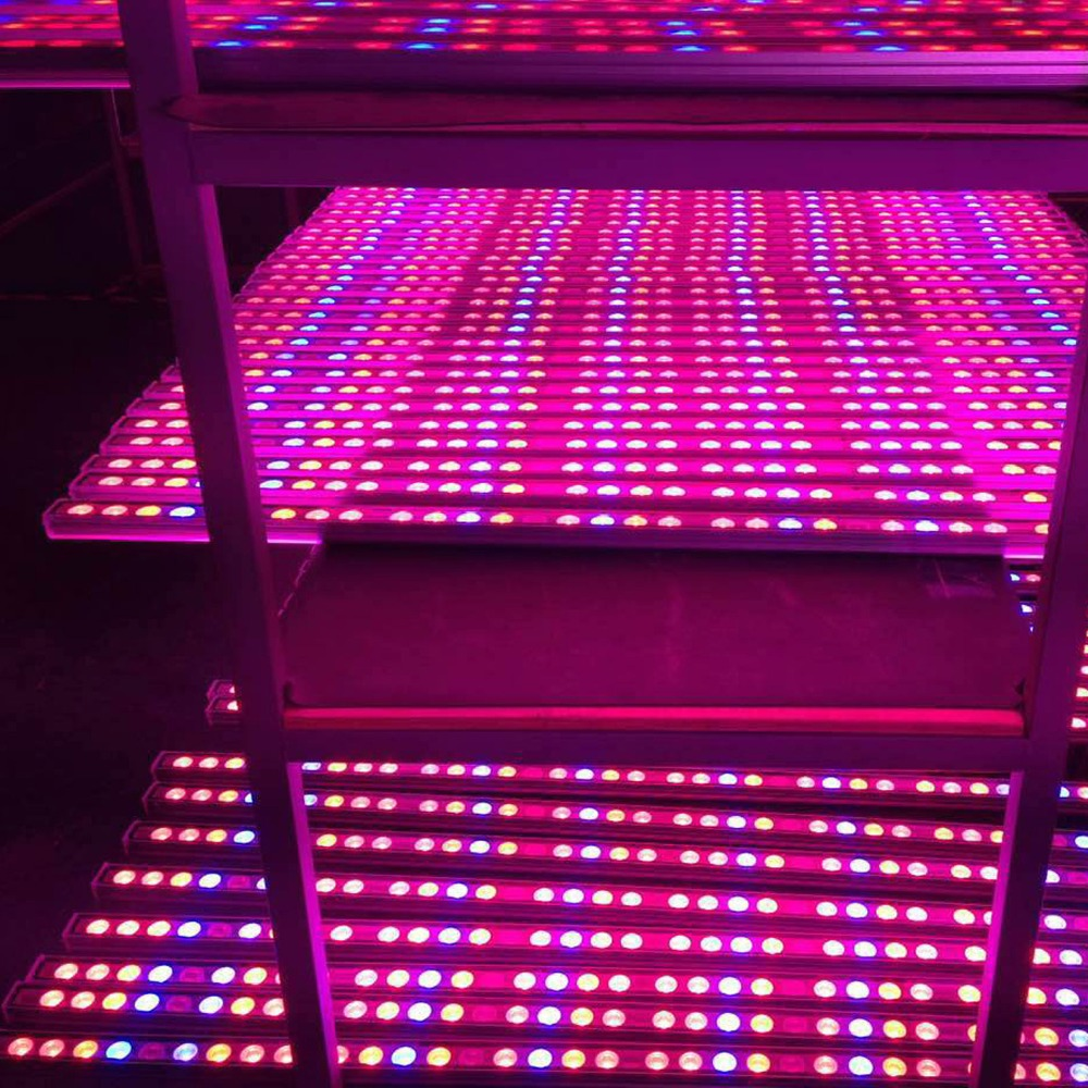 High Quality Led Grow Lights: High Quality Waterproof 54W Led Grow Light Bar Red Blue