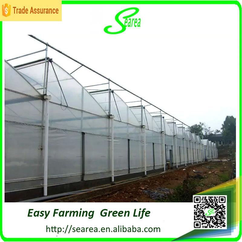 Penjualan panas pertanian polikarbonat rumah kaca naungan hijau desain rumah