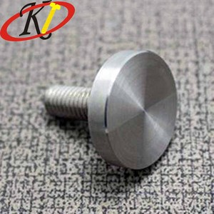 Chinese Fastener Manufacture Beautiful Matte Mirror Decorative Screws for Glasses