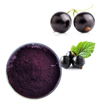 hot sale black currant juice powder for anti ageing