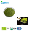 Natural water soluble organic matcha private label