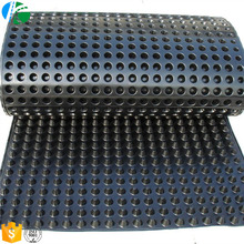 HDPE 18mm Green Roof Drainage Board for landscape project