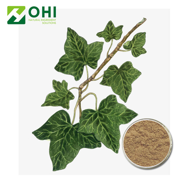 2018 Hot Style Hedera Helix Dry Leaf Extract - Buy Hedera Helix Dry Leaf  Extract,Hedera Helix Dry Leaf Extract,Hedera Helix Dry Leaf Extract Product