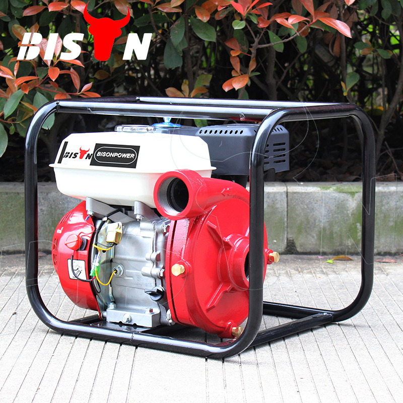 BISON(CHINA) Factory Price BS20I Home Portable 2 Inch High Pressure Gasoline Mini Water Pump WP20