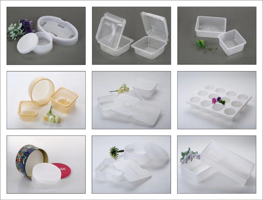 PET 플라스틱 일회용 물집 식품 container 급 clear 과일 tray