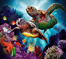 DIY 50x44cm turtle coral fish colorful sea world diamond painting