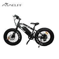 mini Electric bike mountain bikes with fat tire