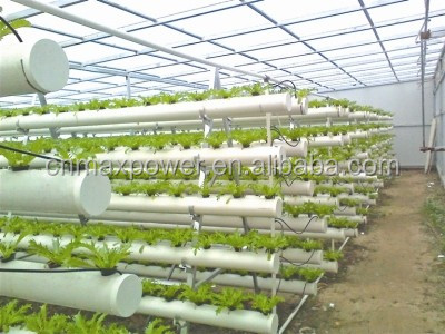 indoor house plant watering systems html with Agricultural Hydroponic Nft Planting Growing Systems 60528823207 on Distressed Wood Windowbox as well Agricultural Hydroponic Nft Planting Growing Systems 60528823207 additionally Hydroponics Kits furthermore Phoenix Roebelenii pygmy Date Palm 58715 in addition Ficus Nitida Indian Laurel 41293.
