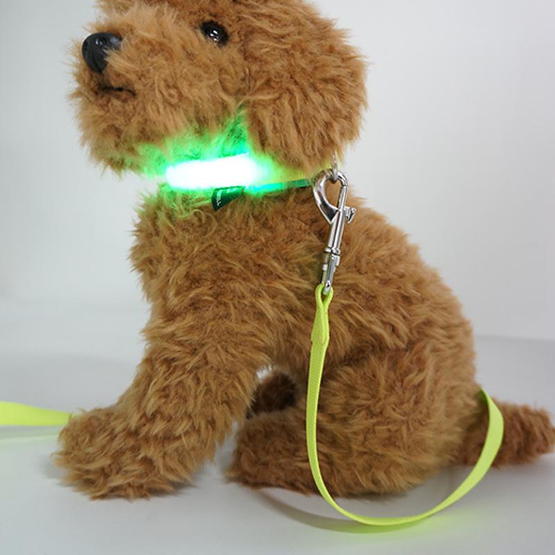 Heißer Verkauf Nachladbare Wasserdichte Nacht Walking Sicherheit Led Blinkt Hund Kragen