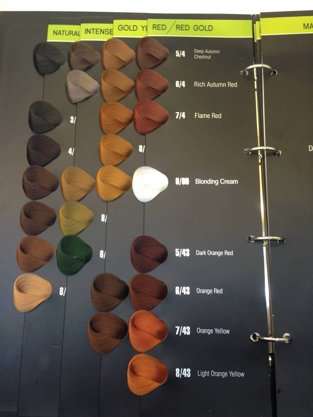 oem hair color swatch book salon hair color chart - Hair Color Book