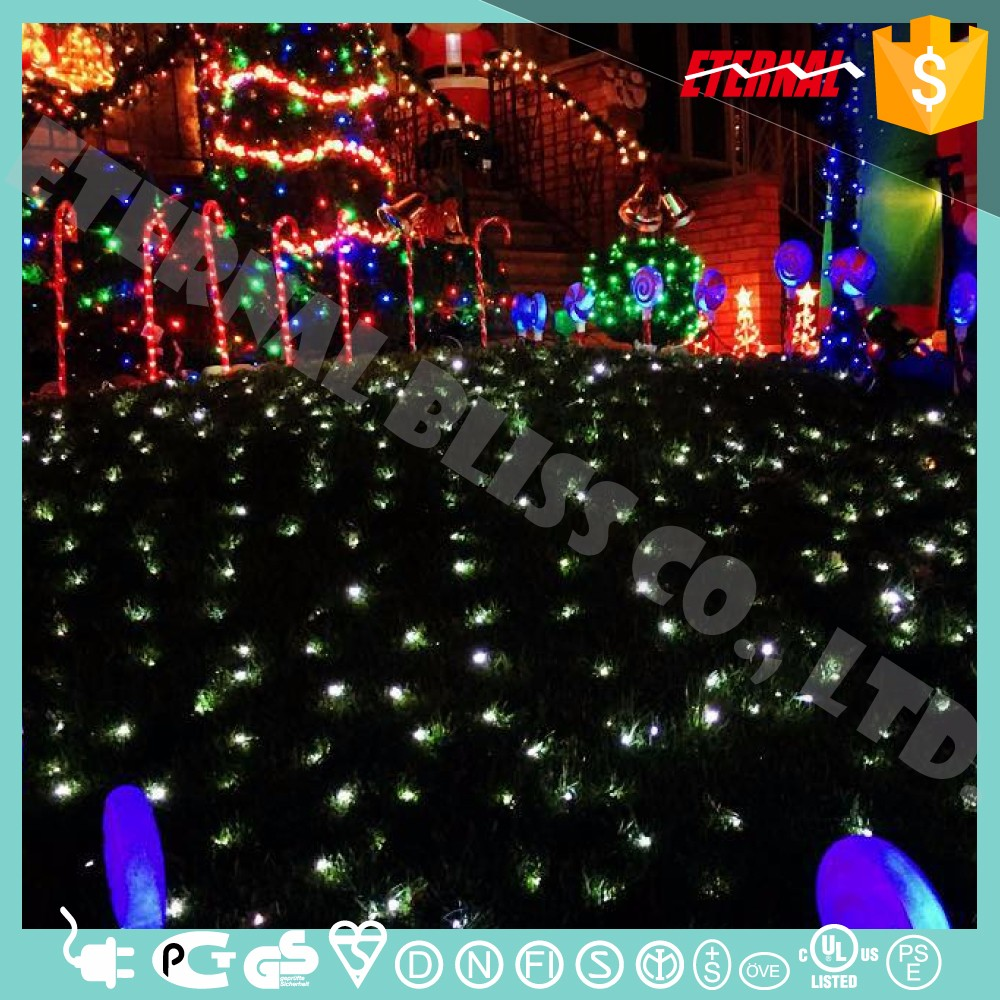 Backyard parties Residential Event Installation LED String Light