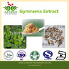 Hot sale 15% OFF Gymnema Sylvestre Extract