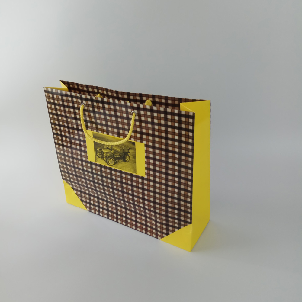 Custom Luxury/gift Shopping Carry Paper Packaging Bag  with handle