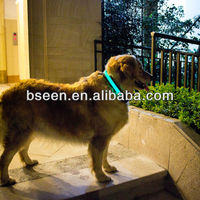 Good quality led dog collar pet supply manufacturer