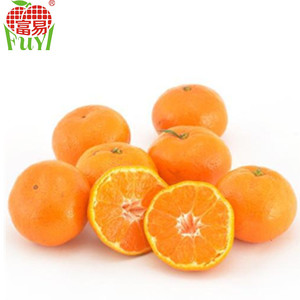Good Qualtity And Cheap Import Price Nanfeng Mandarin Orange