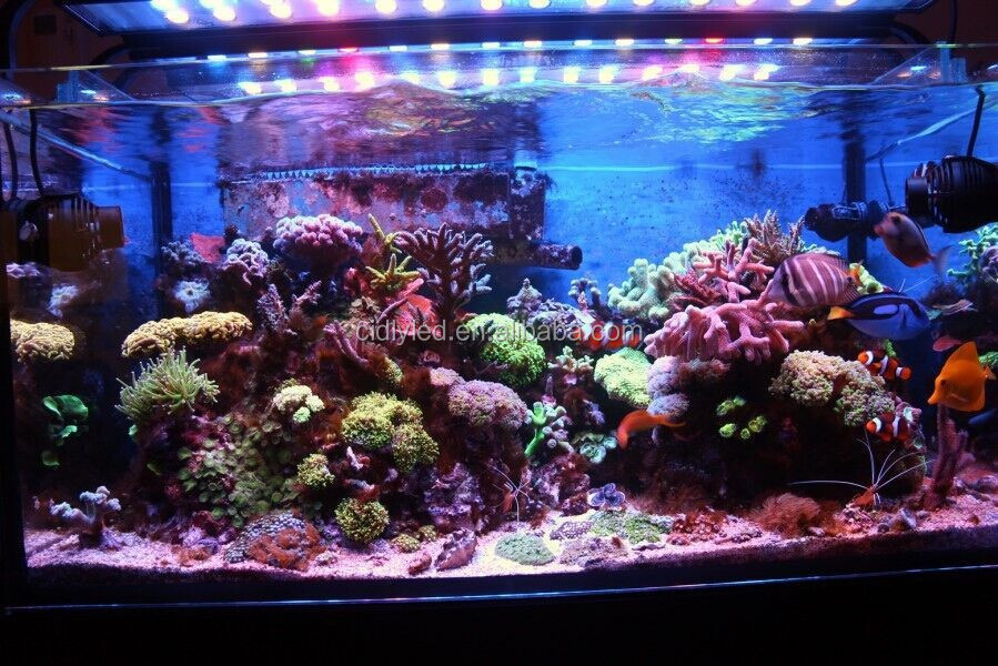 Led Light For Aquarium Coral Reef Planted Tank Cidly 2 Feet 3 Feet ...